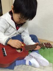 ウクレレ弾くとらちゃん 2014/3