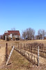 Niagara winery by SpecialK08