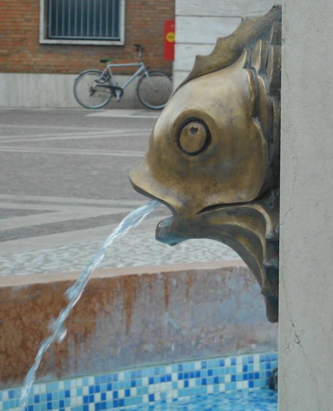 bici e pesce con acqua, Virgilio Milani, Rovigo