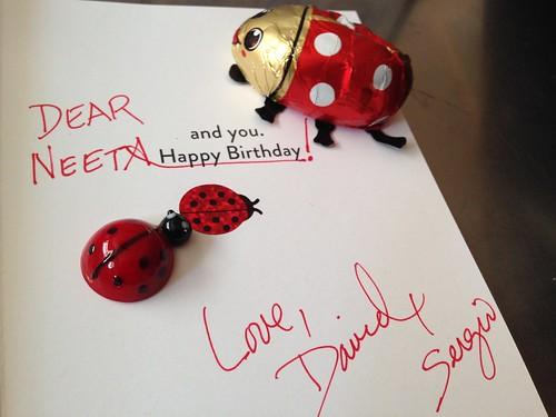 IMG_2558 Ladybug Birthday Gifts from David