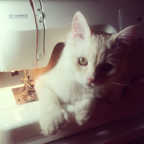I think there's something wrong with my sewing machine.