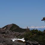 西岳の向こうは北アルプス