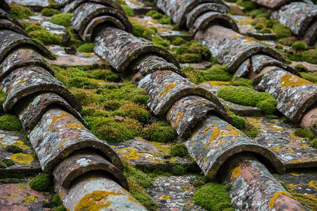 Mossy Italian Roof Tiles