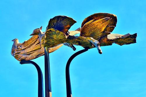 sculpture art monument statue belgium belgique hasselt belgië bel aaa standbeeld beeld limburg flanders belgien bélgica kunstmuseum vlaanderen flandern belgia flandre flandes thegalaxy ベルギー flemishregion flhregion panasonicdmcfz200