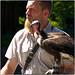 Small photo of Eagle