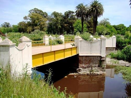 Reflejos Bajo el Puente.