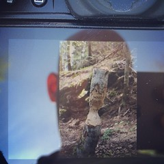 Nationalparkshumor. #tyresta #fujifilmxt1