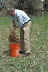 soil(0.0), insect(0.0), beekeeper(0.0), grass(1.0), gardener(1.0), lawn(1.0),