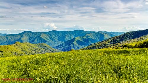 usa geotagged unitedstates hiking northcarolina backpacking nellie waynesville greatsmokymountainsnationalpark gsmnp maggievalley canon7d hemphillbaldtrail sigma18250mmf3563dcmacrooshsm geo:lat=3556398667 geo:lon=8310387467