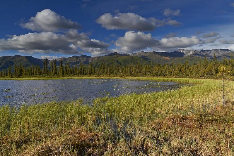 Lake near Dead Dog Hill - Wrangell St. Elias National Park
