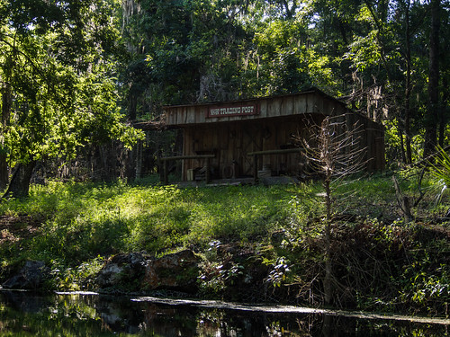 silversprings usa tree water architecture buildings river landscape store spring cabin ruins florida structures kayaking edrosack
