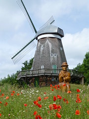 Windmühle von Röbel