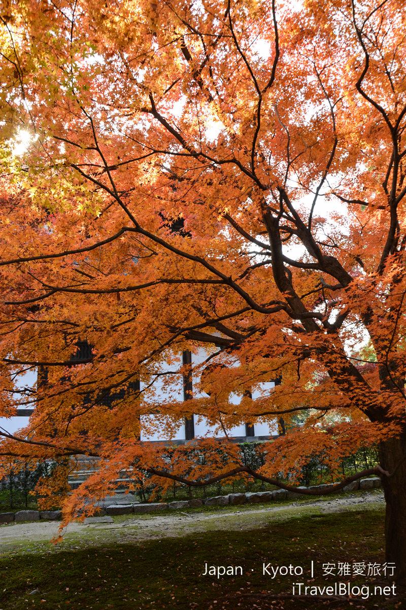 京都 东福寺54