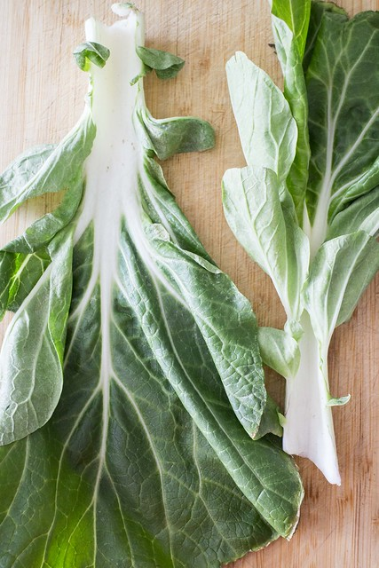 How to Freeze Bok Choy_2