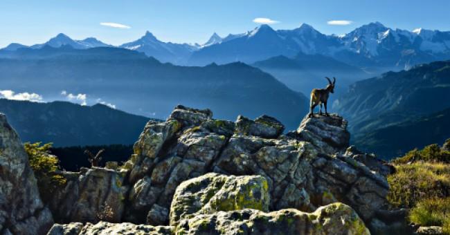Vyhrajte letní dovolenou v Graubündenu!