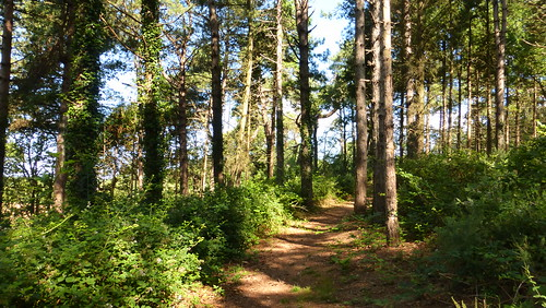 012 Sentier de découvertede la Montagne, Lessay