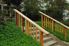 home fencing(0.0), shrub(0.0), fence(0.0), garden(0.0), picket fence(0.0), deck(0.0), walkway(0.0), backyard(1.0), handrail(1.0), yard(1.0),
