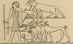 """Image from page 84 of """"The dawn of civilization: Egypt and Chaldaea"""" (1897)"""