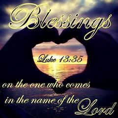 Luke 13:35 nlt