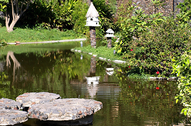 Stepping stones on the pond, Risco Bello, Puerto de la Cruz, Tenerife