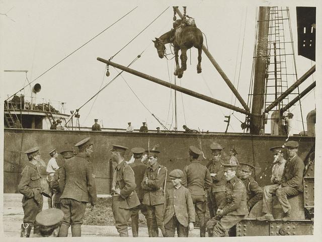 Unloading horses at Boulogne, c1915