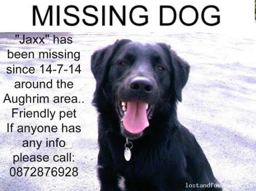 Mon, Jul 14th, 2014 Lost Male Dog - R446, Galway
