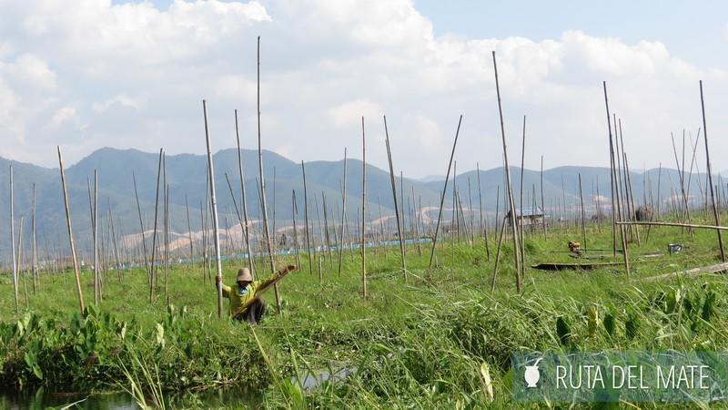 Lago Inle Myanmar (30)