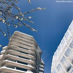 The #only #blue #sky #today #hamburg #hamburg_de #ahoihamburg #igershamburg #visithamburg #explorehamburg #traumstadt #speicherstadt #igershh #welovehh #igersgermany #germany #architecture #architecturephotography #spring #flowers #vsco #vscocam #wanderlu