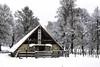 Nieve por Sakana y Urbasa