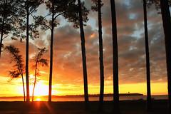 Dawn on Daufuskie