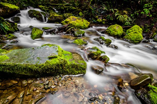 chuckanutdrive oystercreek waterfall bow washington unitedstates us creek forest longexposure landscape