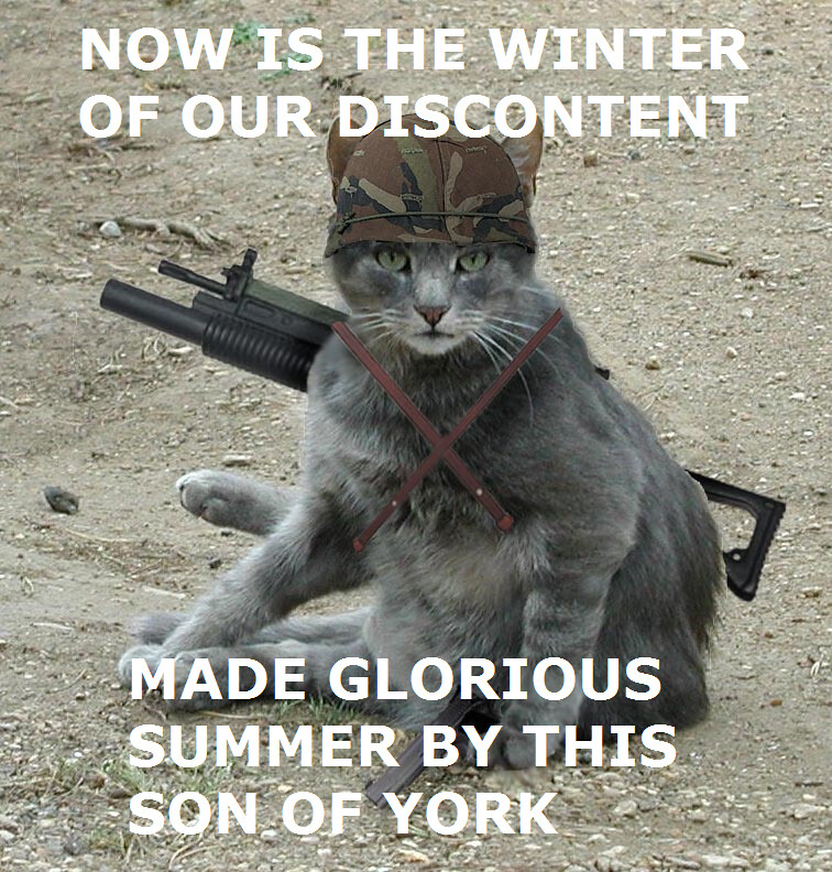 Military Shakespeare Cat