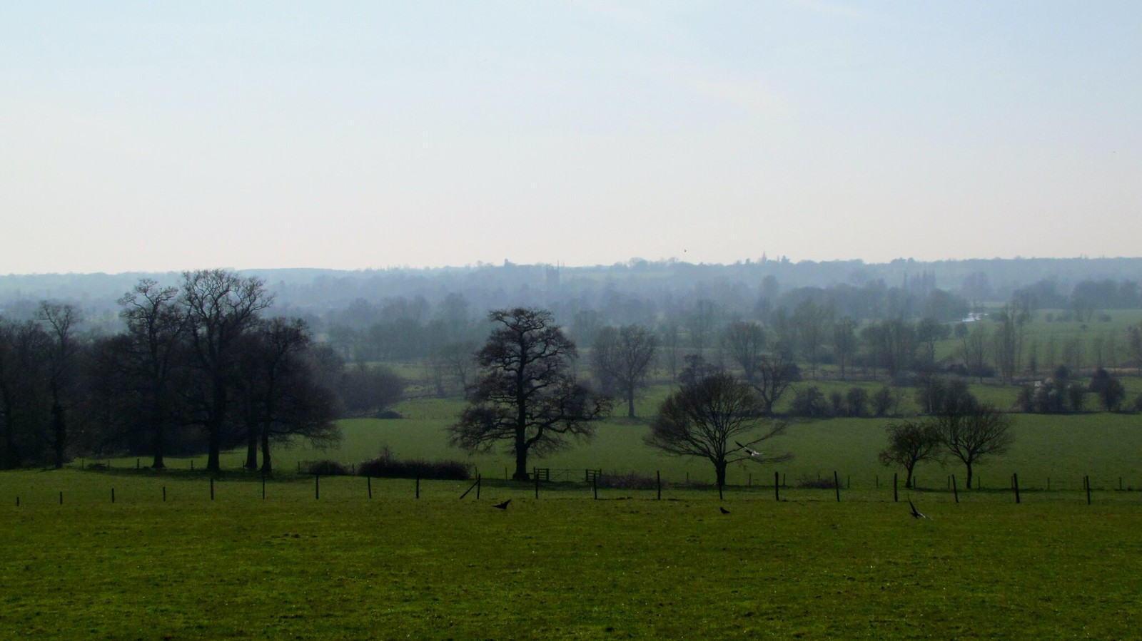 photo from walk Dedham Vale