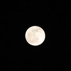Full Moon - Photo of Créteil