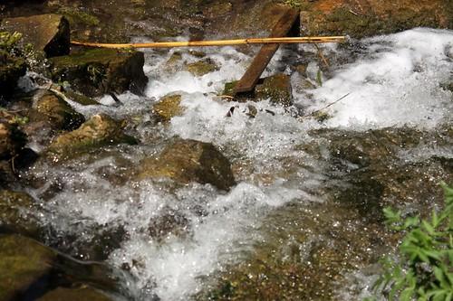 """Parco degli acquedotti: La """"forza dell'acqua"""""""