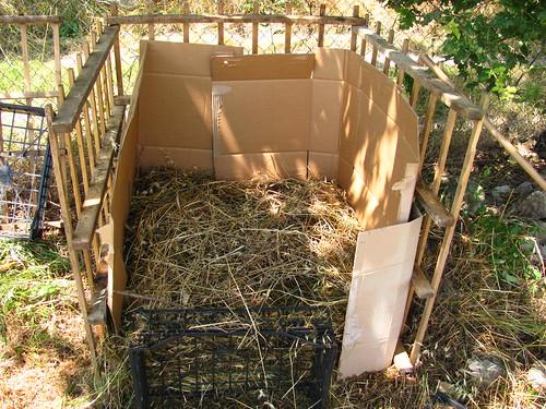 Cubo compostiera | www.dettochiaramente.it/verde