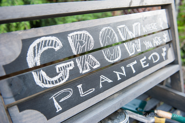 "Sign on top of wood rack after using chalk to write "" Grow where you are planted"""