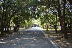shrine140