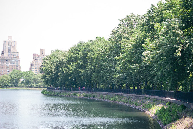 {scenes from central park, 2} via chevrons & éclairs