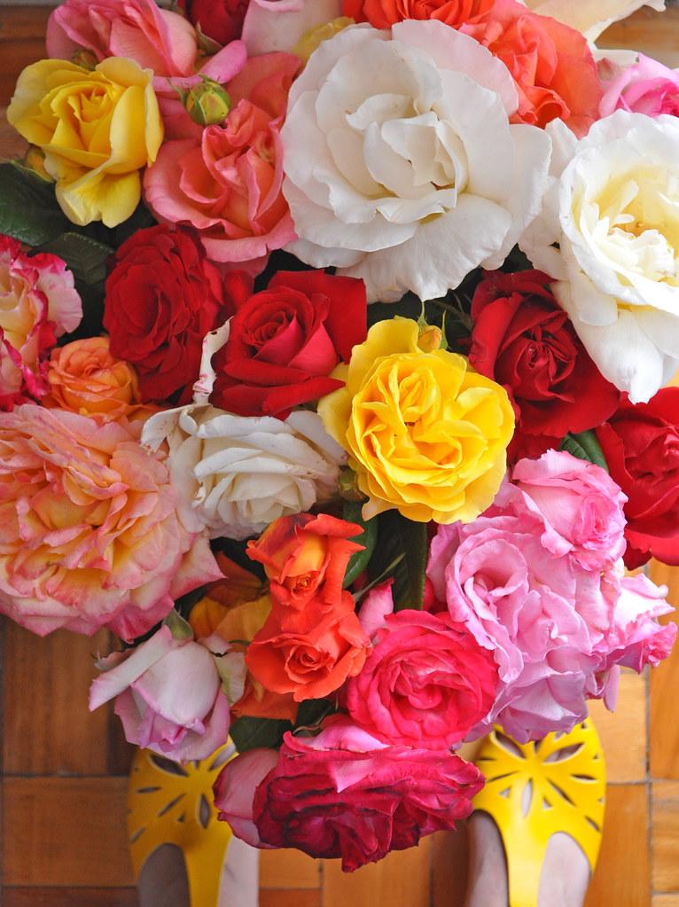 flowers not vintage