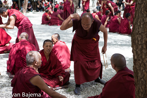 Tibet-D3-3019