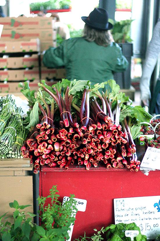 rhubarb at Jean Talon