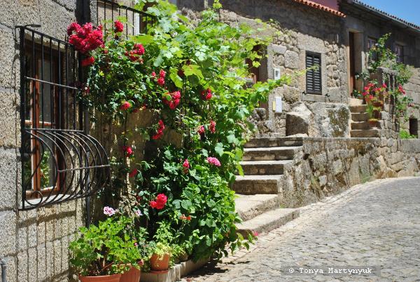 9 - экскурсия в Монсанту - Monsanto - самая португальская деревня Португалии
