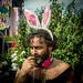 Down the Rabbit Hole 2014 mashup item