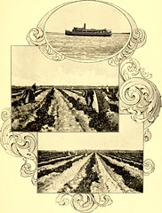 """Image from page 280 of """"North Carolina and its resources"""" (1896)"""