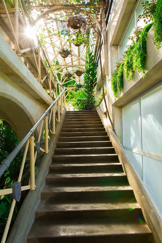 Botanical Conservatory_14