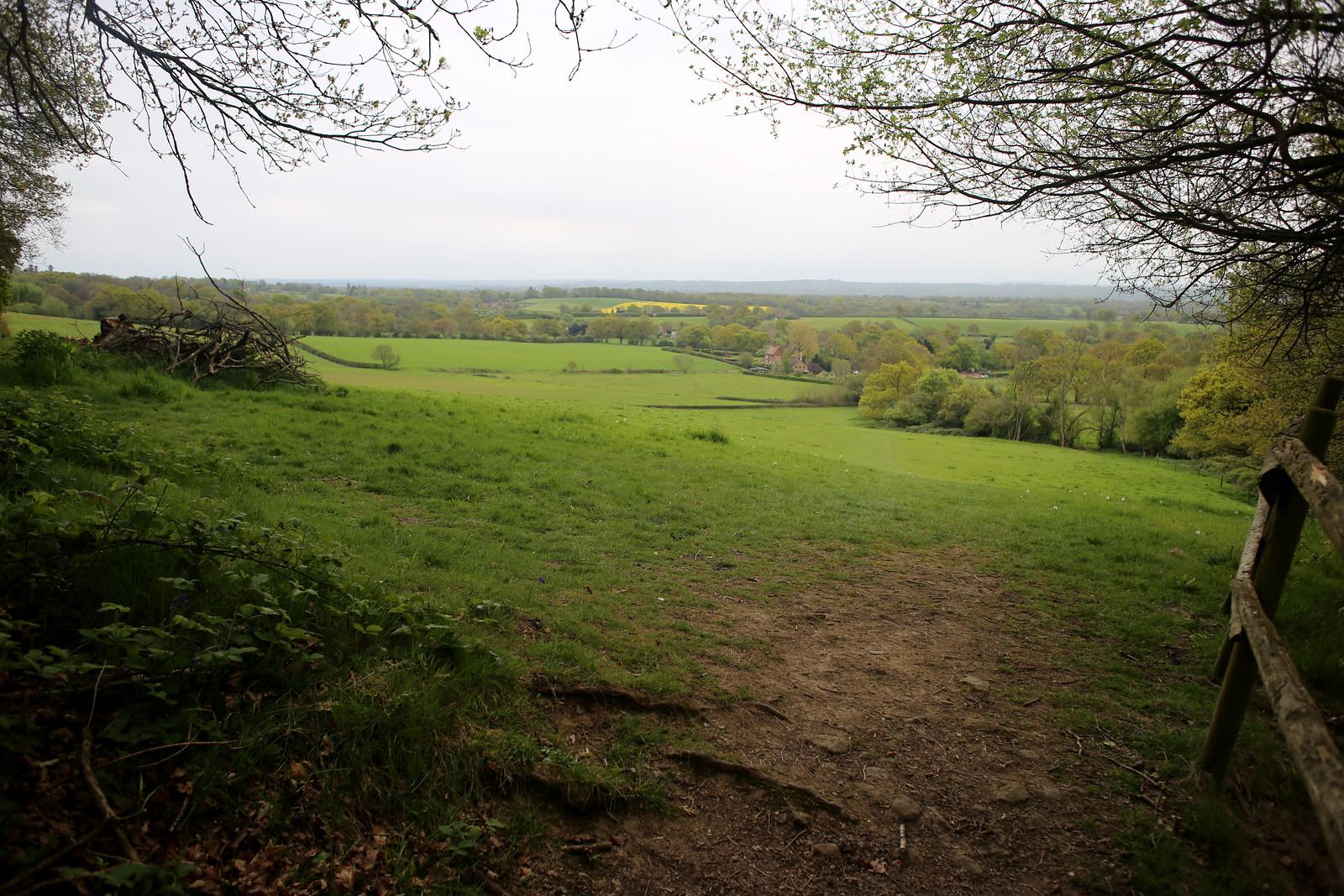 Near Limpsfield Chart