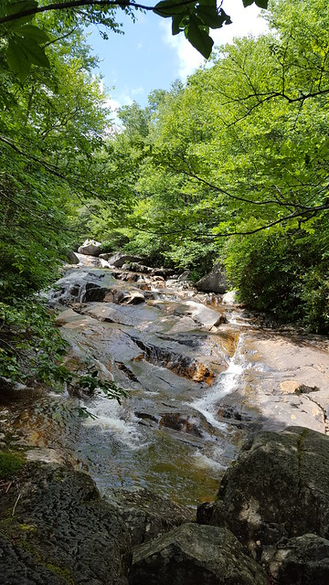 Creek flowing at Grayson Highlands State Park - Bob D