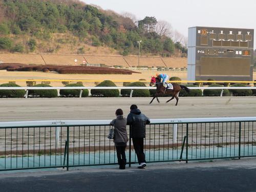 佐賀競馬場のレース前