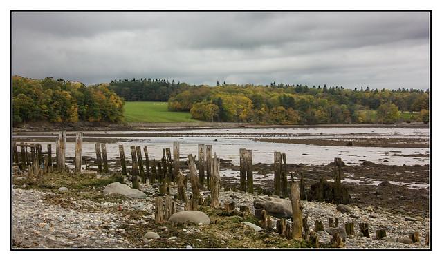 On the Estuary, Canon EOS 60D, Tamron 18-250mm f/3.5-6.3 Di II LD Aspherical [IF] Macro